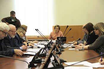 В областной Думе прошло заседание комитета по образованию, науке, культуре, делам семьи, молодежи и спорту под председательством Ларисы Кругловой